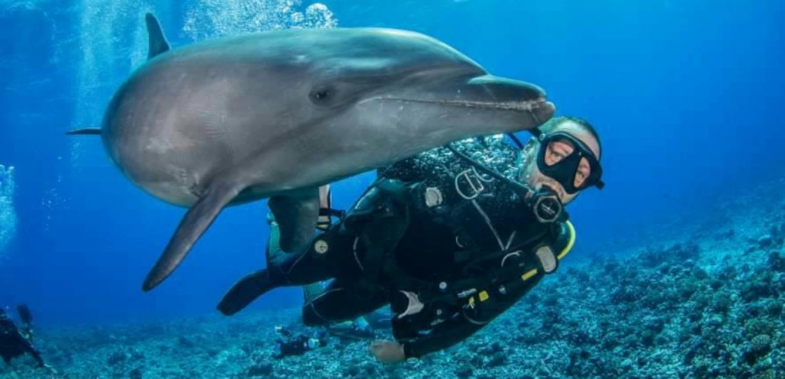 https://tahititourisme.es/wp-content/uploads/2017/08/Archimedeexpeditionsphotocouverturure_1140x550px.png