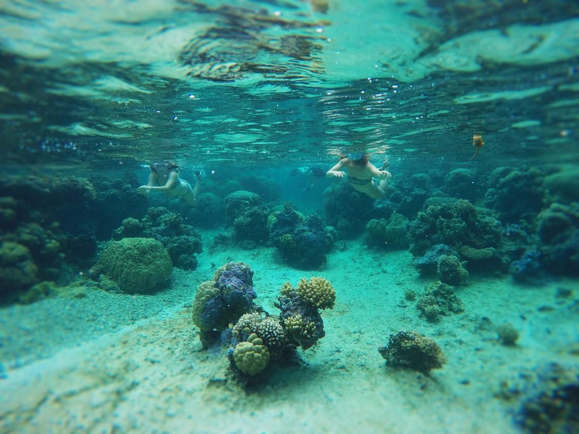 https://tahititourisme.es/wp-content/uploads/2017/08/Bora-Bora-Reef-Discovery-2.jpg