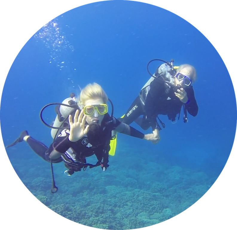 https://tahititourisme.es/wp-content/uploads/2017/08/Divers-in-the-first-try.png