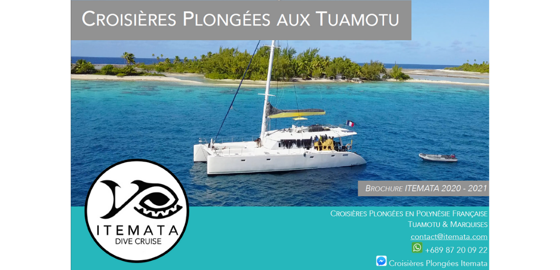 https://tahititourisme.es/wp-content/uploads/2017/08/ITEMATA_1.png
