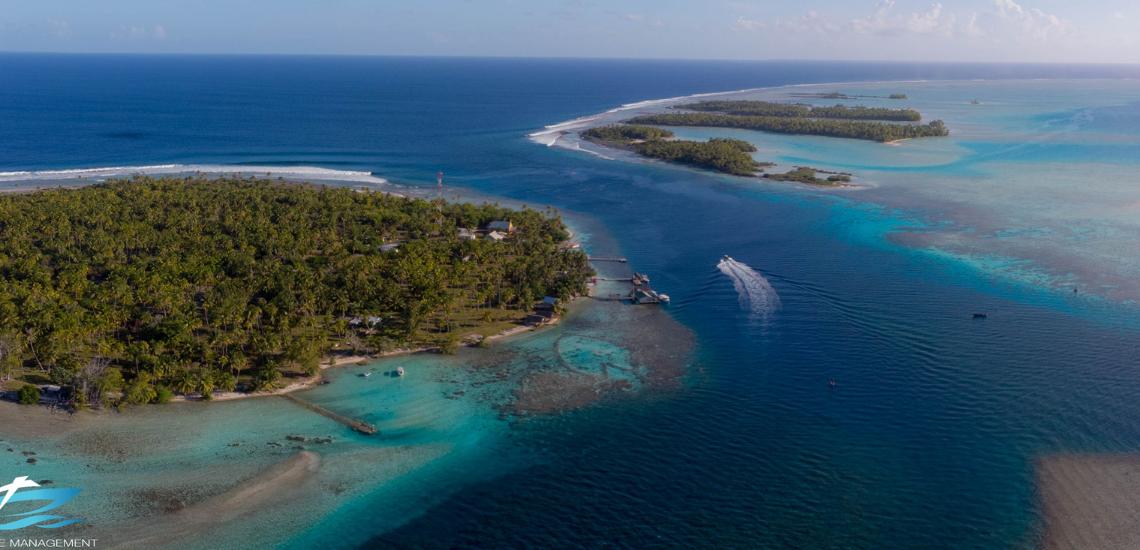 https://tahititourisme.es/wp-content/uploads/2017/08/Tahiti-Dive-Management.png