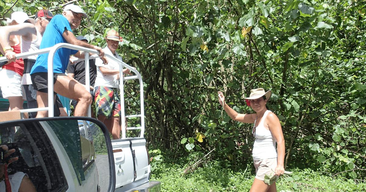 https://tahititourisme.es/wp-content/uploads/2017/08/Tahiti-Safari-Expeditions_1140x500-min.png