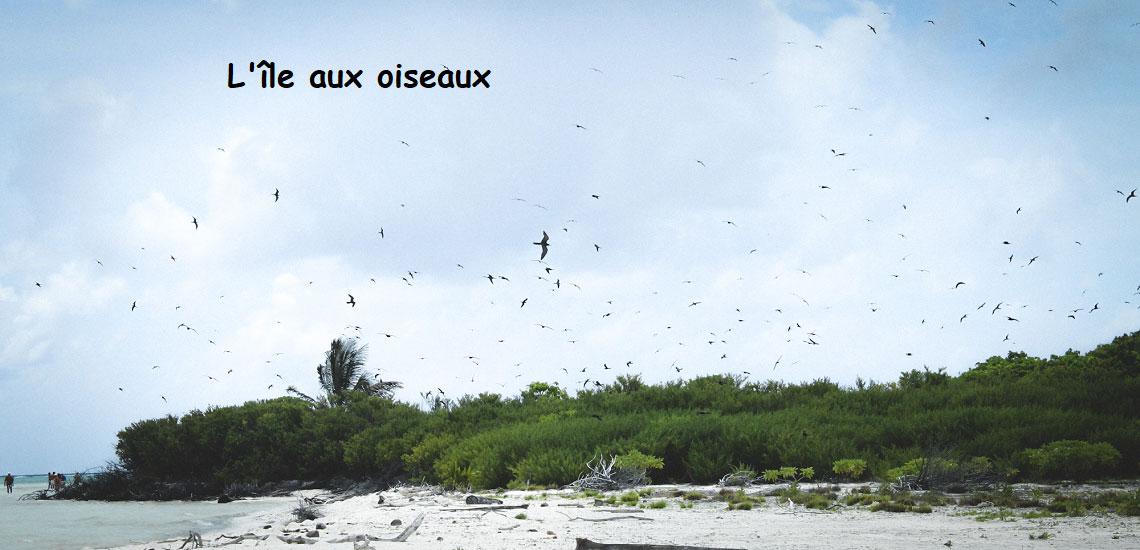https://tahititourisme.es/wp-content/uploads/2017/08/Tahiti-Voile-et-Lagon-photo-de-couv-2.jpg