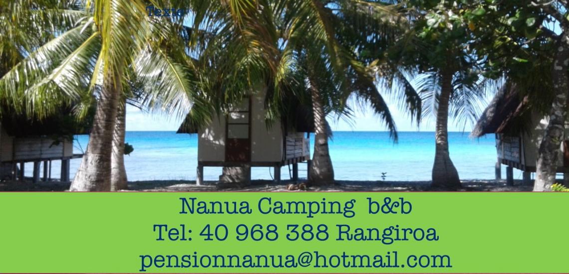 https://tahititourisme.es/wp-content/uploads/2017/08/nanuacamping_1140x550.png