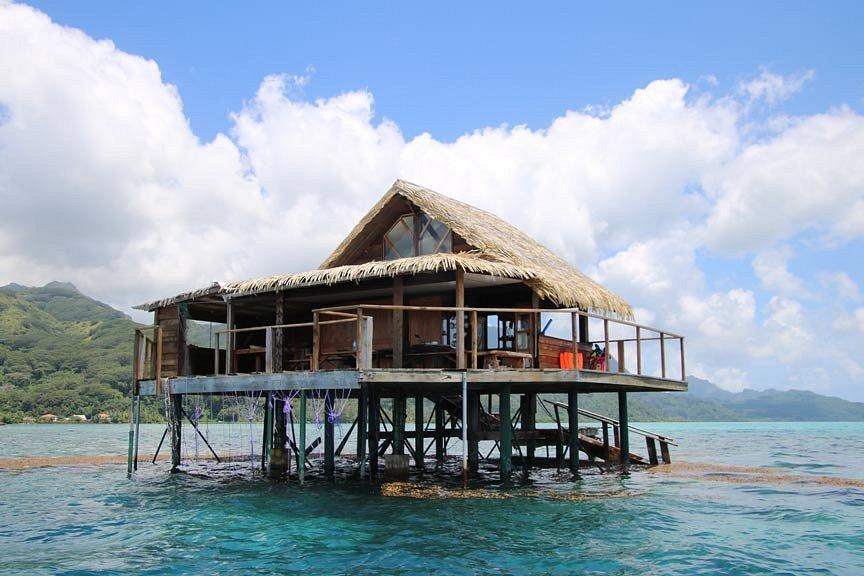 https://tahititourisme.es/wp-content/uploads/2017/08/pearl-farm-house-or-hut.jpg