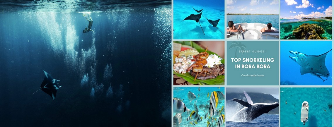 https://tahititourisme.es/wp-content/uploads/2017/08/reef-discovery-bora-bora.jpg