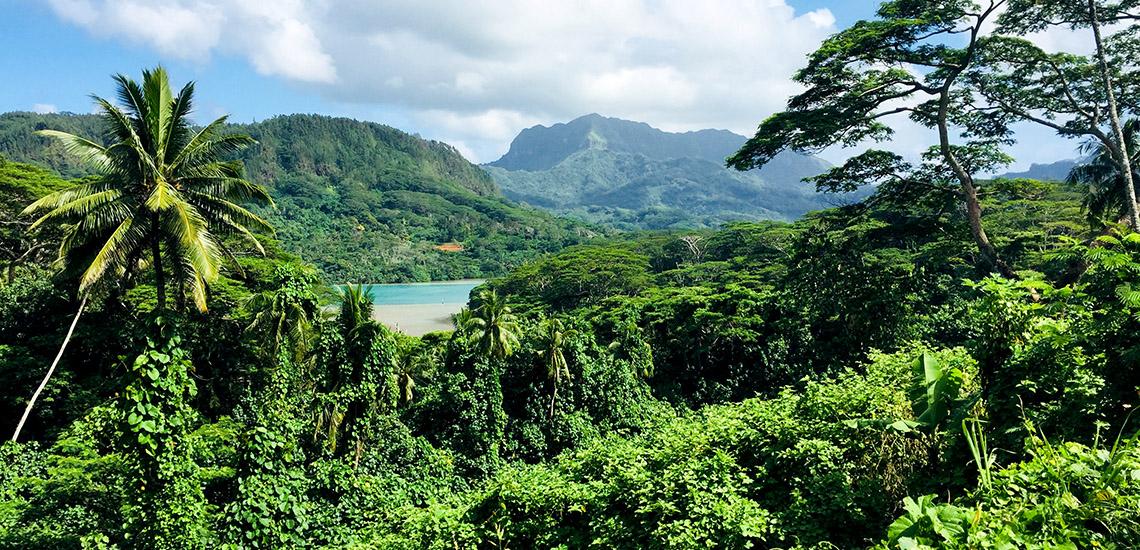 https://tahititourisme.es/wp-content/uploads/2018/05/ACTIVITES-TERRESTRES-Green-Tours-Huahine-2.jpg