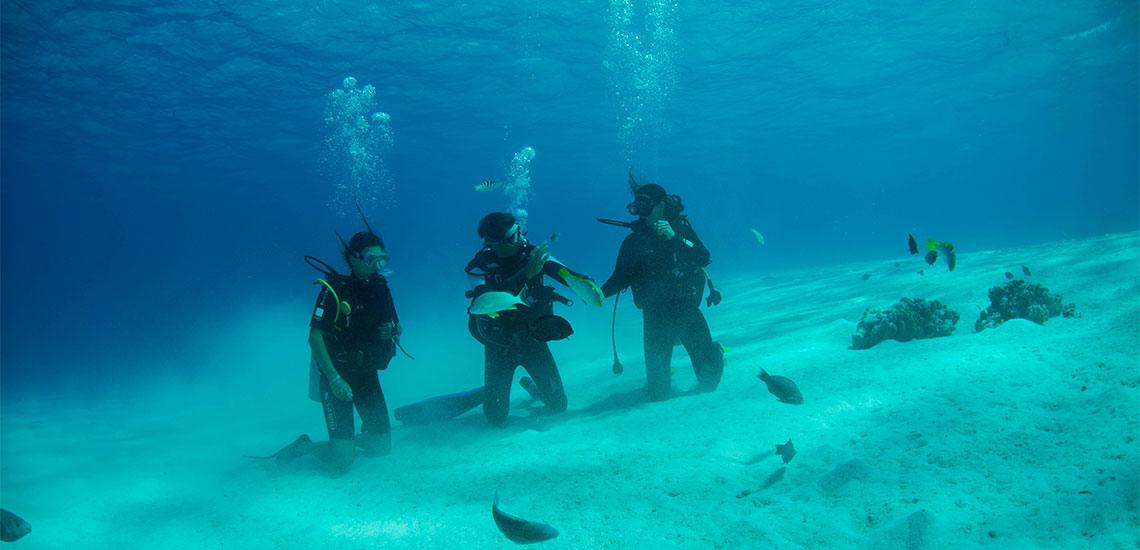 https://tahititourisme.es/wp-content/uploads/2019/04/Tahiti-Nui-Diving-1140x550.jpg