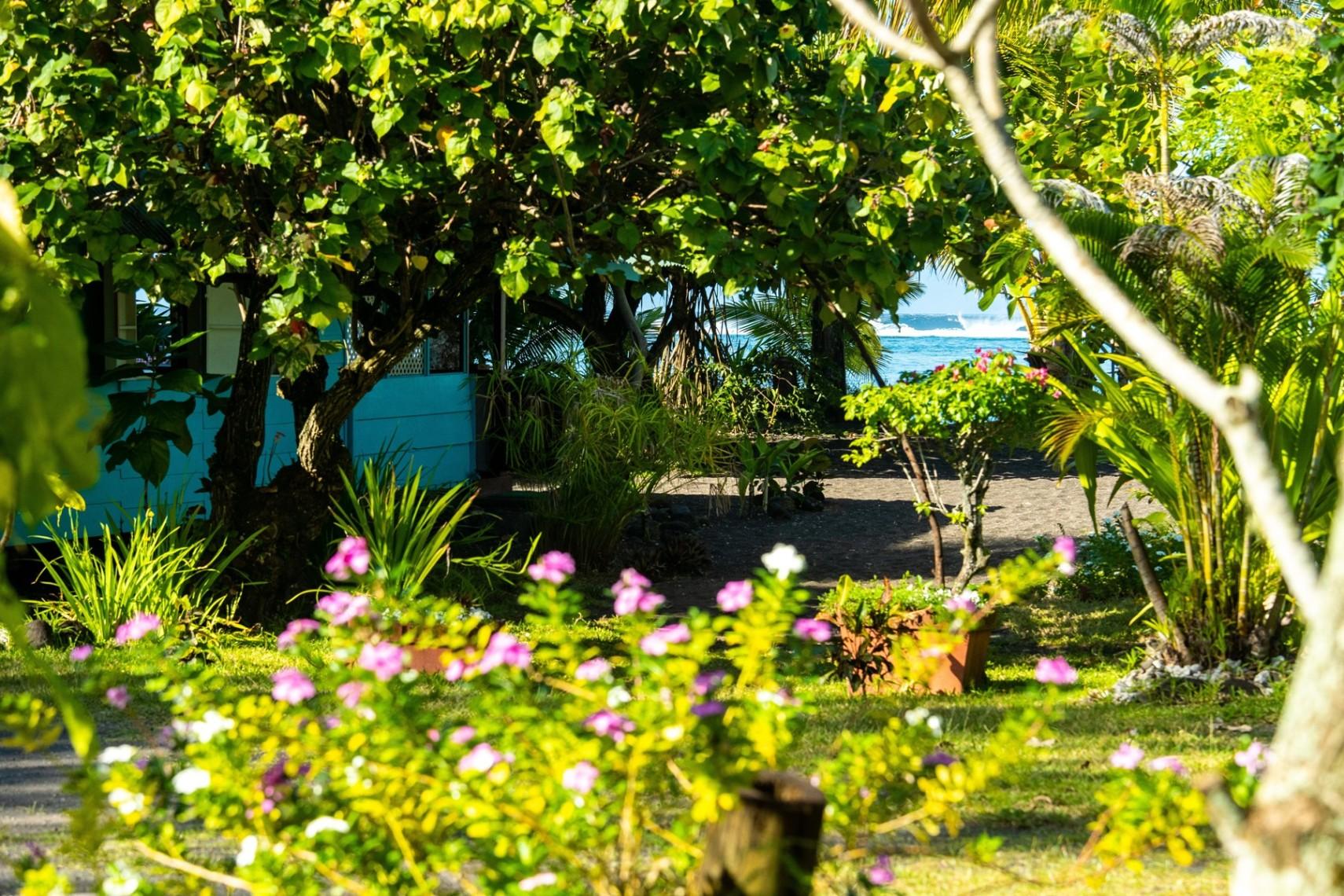https://tahititourisme.es/wp-content/uploads/2019/08/copie-tahiti-tourisme-800ko-1.jpg