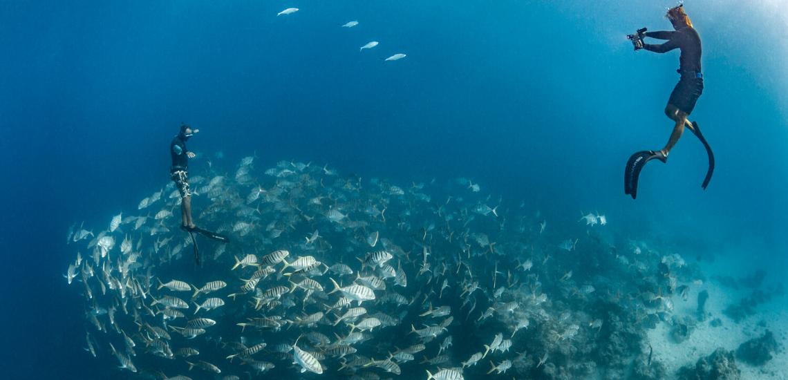 https://tahititourisme.es/wp-content/uploads/2020/02/SnorkelingExpeditions_1140x550.png