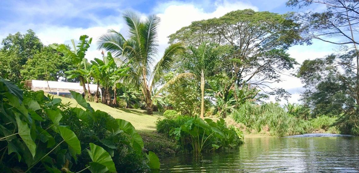 https://tahititourisme.es/wp-content/uploads/2020/03/Teanavai_Camping_1140x5550px.jpg