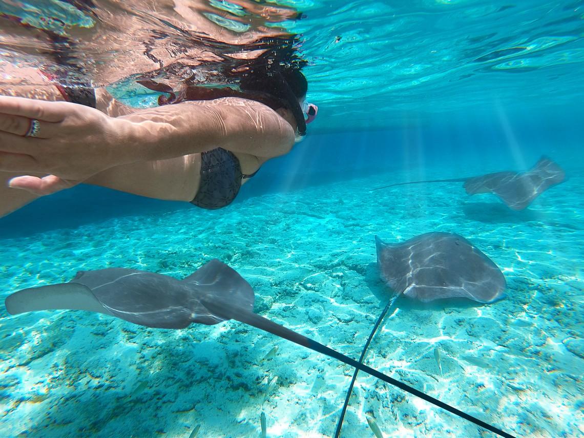 https://tahititourisme.es/wp-content/uploads/2020/11/Lagoon-Srvice-Bora-Bora-2.jpg