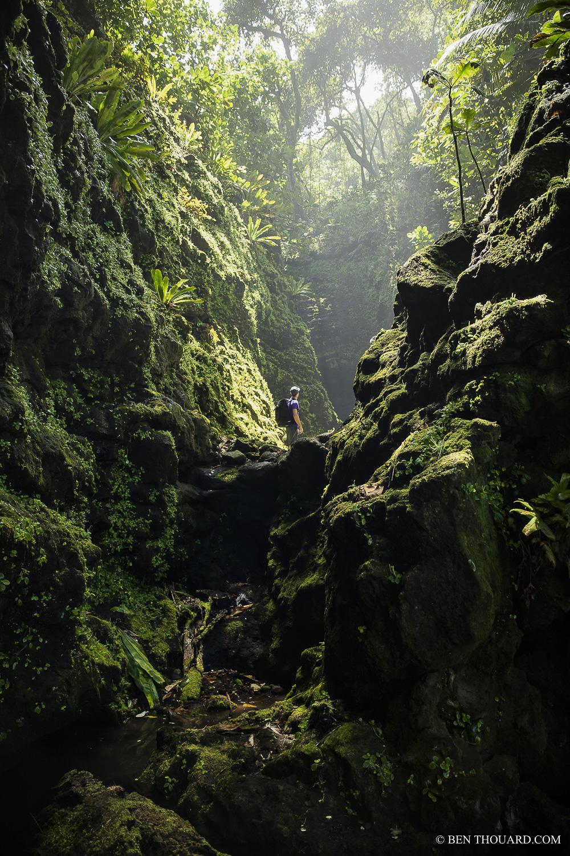 https://tahititourisme.es/wp-content/uploads/2021/04/benthouard_tepari_hike_0242.jpg